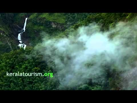 wayanad tour places, wayanad tour packages, home stays in wayanad, wayanad hotels