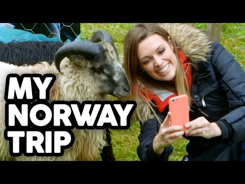 Skydiving & Sheep Herding in Norway - Travel Vlog