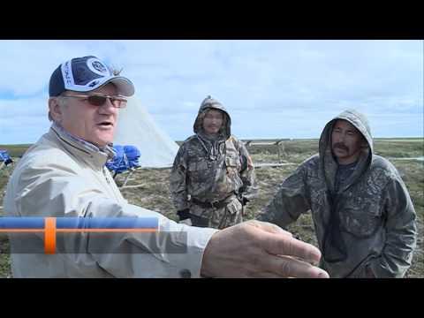 рыбаки новый уренгой