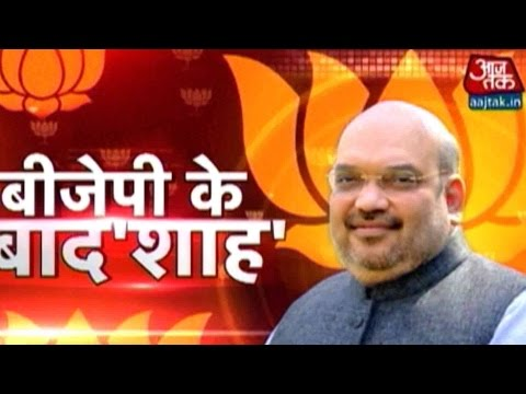 Amit Shah Elected BJP Chief For Second Time