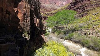 Grand Canyon search for missing hikers aided by Merrell Boot