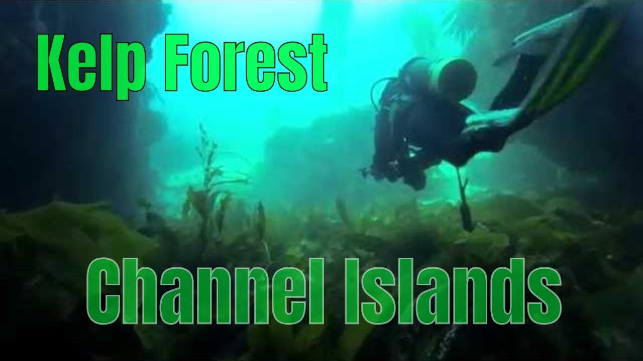 Scuba Diving Channel Islands National Park