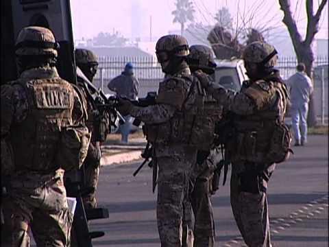 Swat Team uk Swat Teams Combat Gang