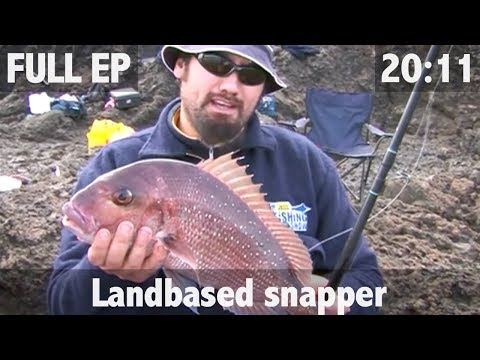 Land based snapper fishing