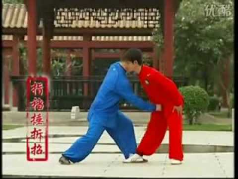 Yang Style Tai Ji Fighting Techniques Image 1