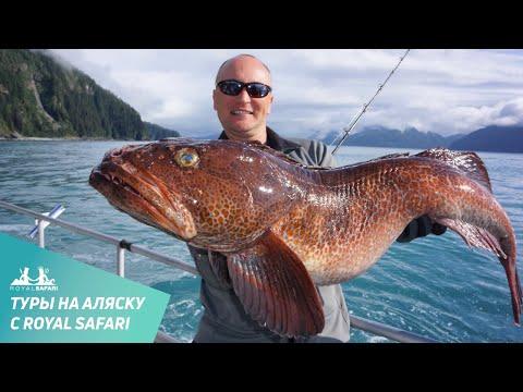 рыбалка на ревит