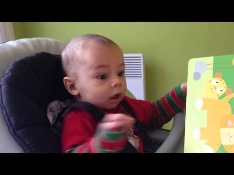 Baby Hears Lion Roar For The First Time video