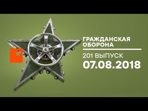 Гражданская оборона – 07.08.2018