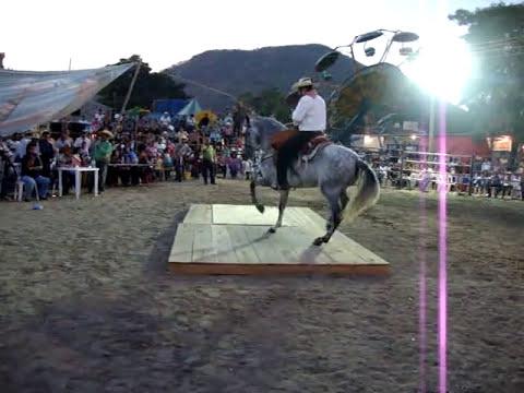 GANADOR DEL 1 ER LUGAR EXPO 2010 C.D ALTAMIRANO GUERRERO