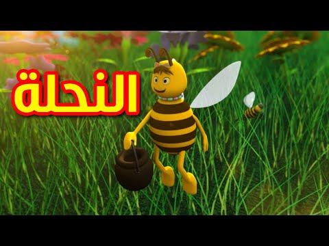ana spongebob arabic song