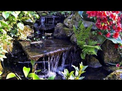 Füllwasser Für Den Gartenteich - Referat über Die Qualität Des Teichwassers