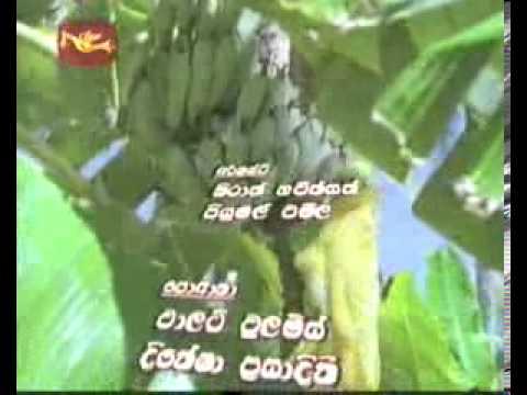 Robinson Andaraya Theme Song video