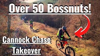 50 Bossnuts Takeover Cannock Chase - Calibre Bossnut Riders MTB Group Meetup