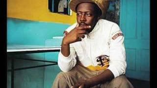 Watch Wyclef Jean Riot video