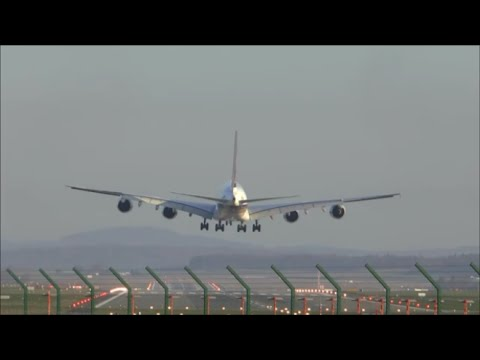 Landing action on runway 34 during sunrise - 28/03/2015