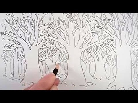 Easy Forest Tree Drawing How to Draw a Tree And a