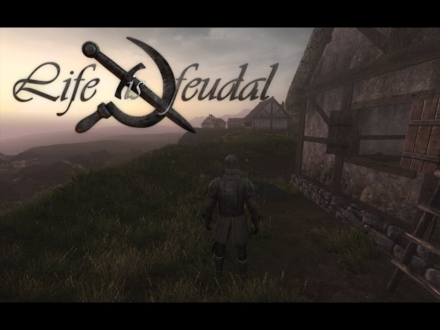 Life is feudal your own не подключается к серверам ролевая флэш игра атака зомби онлайнi