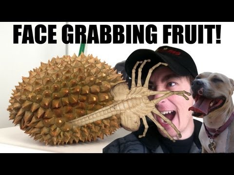 Face Grabbing Fruit! - DANEBOEVLOG