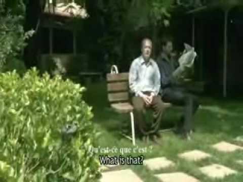 Court-métrage – Qu'est-ce que c'est ? Un moineau