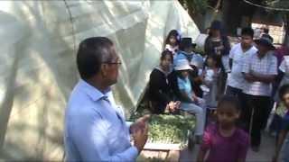 Capacitación para siembra de hortalizas en pequeños espacios, Santa María Xonacatepec