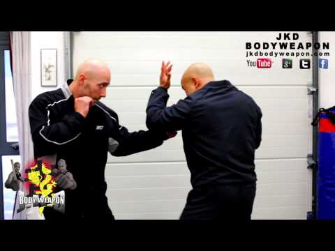 jkd techniques  how to destroy the punch Q13 Image 1