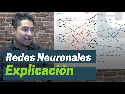 Qué es una red neuronal