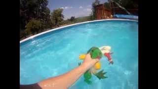 Blaziken and Grovyle in the Pool