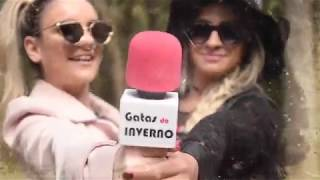 GATAS do INVERNO - Vídeo de Apresentação