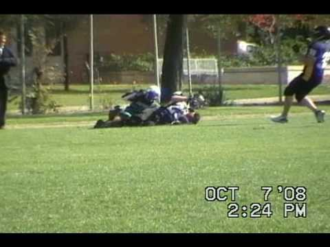 QB SIDELINE SMASH & Falcon Swoops In Clutches Ball & Runs -Ben Ritchie LB23 aka American Storm