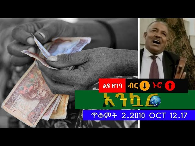 Ethiopian Daily News Digest (Birr Devaluation Special)