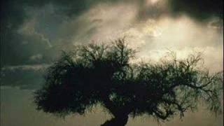 Watch Sonata Arctica Draw Me video