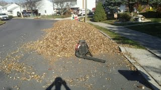 Redmax EBZ 8500 blowing huge pile of leaves