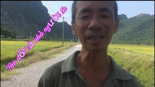 Nghịch ngu của tuổi thơ: Đốt Đống Rơm Bằng Que Hương