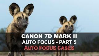 Canon 7D Mark II Auto Focus - Part 5/5: AF Cases