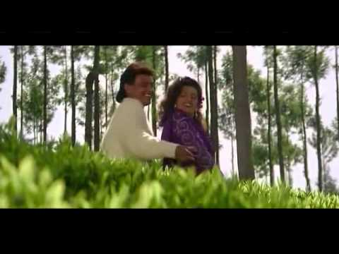 Hum Teri Mohabbat Mein   Phool Aur Angaar 720p Hd Song video
