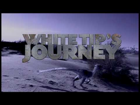 White Tip's Journey Introduction (accidentely with Dutch subtiteling)