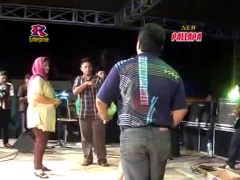 Antara Teman dan Kasih - Lilin Herlina - New Pallapa Live Je