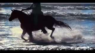 Watch Iron Savior Forevermore video
