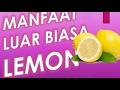 Manfaat Menakjubkan Lemon Untuk Maag