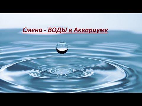 Подмена воды в аквариуме без хлопот и проблем
