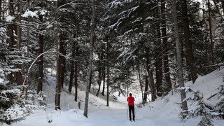 Cross Country Skiing | A Pure Michigan Winter