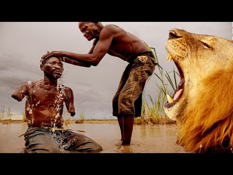 Lions Eat Man (must see)