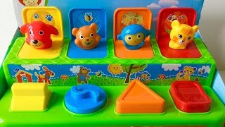 Baby Animals Pop Up Toy