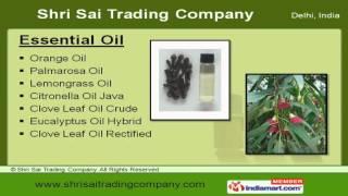 Menthol & Mint Products by Shri Sai Trading Company, Delhi