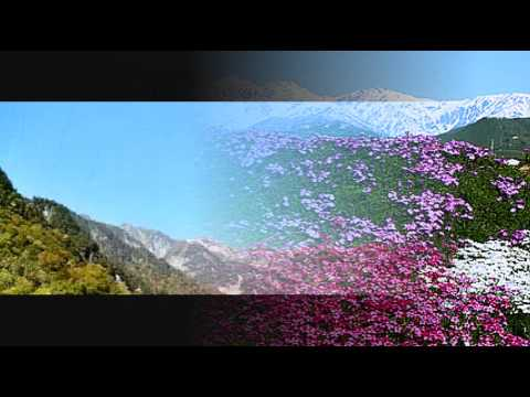 奈良光枝の画像 p1_28