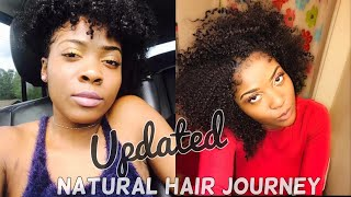 Updated Natural Hair Journey (Pics) Birth-Present