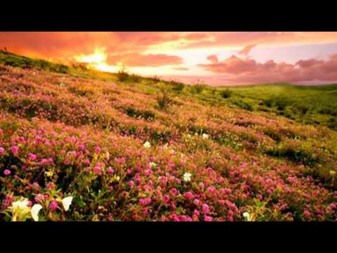 Удивительно красивая музыка - Джеймс Ласт Жизнь прекрасна   #Музыка