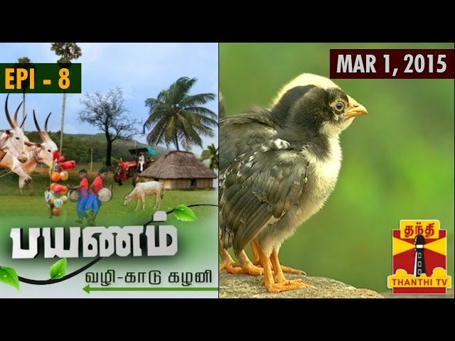 """Payanam"" - Via Dense Forests and Lush Greeneries - (1/03/2015) - Thanthi TV"