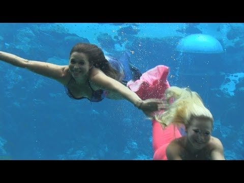 Attractions - The Show - July 18, 2013 - Weeki Wachee Springs, Give Kids The World, news