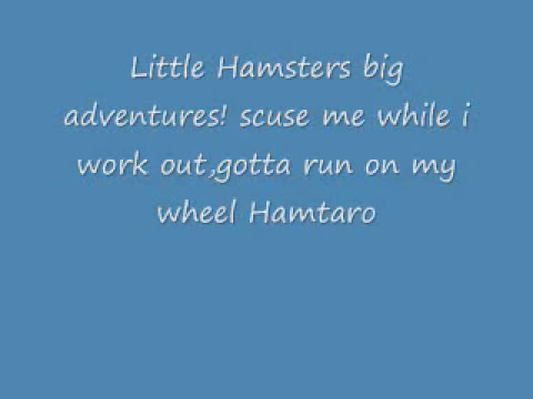 Hamtaro theme song lyrics